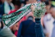 Aficionados del Elche CF durante un partido