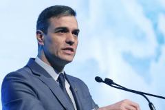 """""""Con Don Falcon a los mandos, van a cargarse ese ecosistema milenario llamado España"""""""