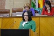 La diputada Luz Belinda Rodríguez, durante una intervención en el Parlamento.