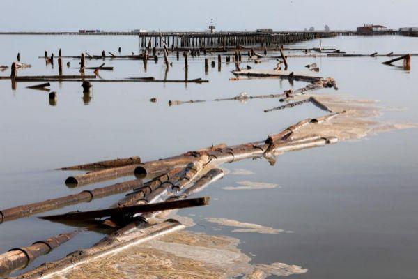 Las inundaciones han erosionado gravemente la biodiversidad del Delta...
