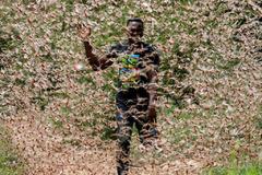 Un hombre corre a través de una nube de langostas en Kenia.