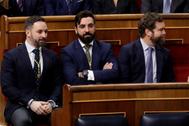 El líder de Vox, Santiago Abascal, durante la apertura solemne del Congreso.