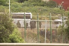 Traslado de inmigrantes que intentaron saltar la valla de Melilla en 2015.