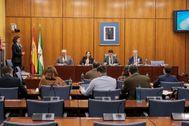 Ana María Riego, ex administrativa del área Financiera de la Faffe, comparece ayer en la comisión parlamentaria sobre la fundación pública.
