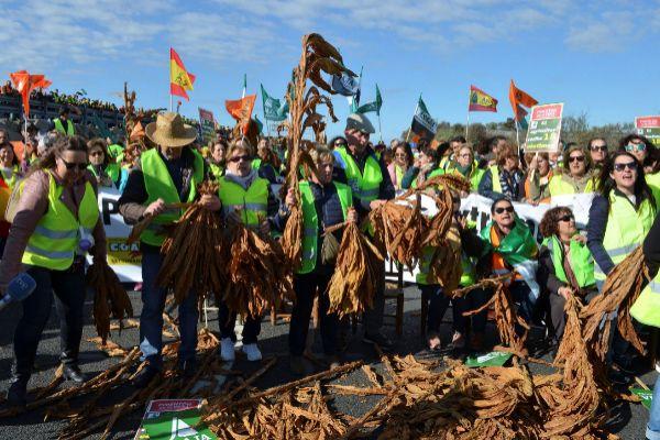 """El campo colapsa las carreteras de Extremadura: """"El coletas come lubina y los agricultores en la ruina"""""""