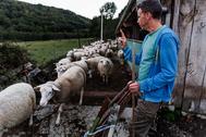 Pastor de ovejas en una fotografía de 2018 en Sabuguido (Orense)