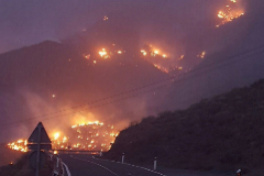Incendio declarado este sábado en la localidad de Tasarte, en Gran Canaria