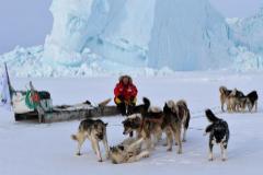 Una expedición culminará en Alaska la última aventura de Félix Rodríguez de la Fuente