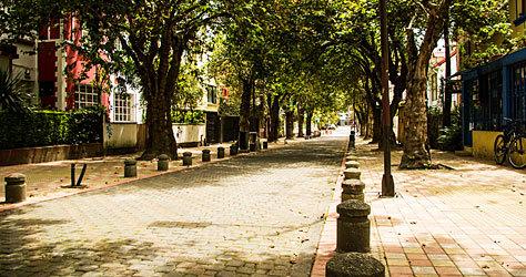 Calle del barrio La Mariscal.