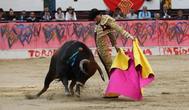 La pandemia obliga a suspender 90 festejos taurinos en sólo dos meses