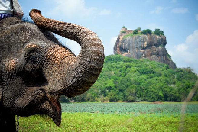 Por qué Sri Lanka es lo más parecido al jardín del edén en la Tierra