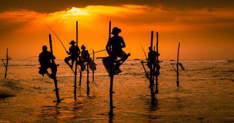 Los pescadores zancudos ejerciendo su técnica ancestral.