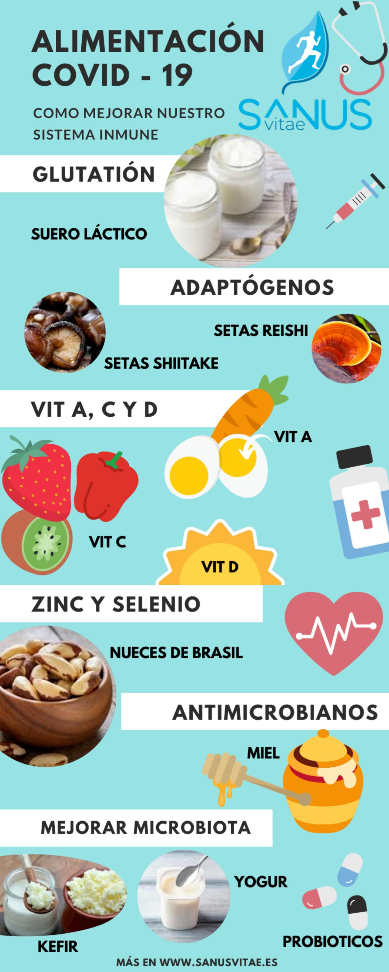 alimentos para sistema inmunologico pdf