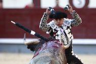 """El drama de picadores y banderilleros ante el toro del coronavirus: """"Lo que no toreemos ahora es la ruina del invierno"""""""