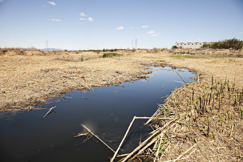 Heineken, Procter & Gamble, Pascual... Así 'cierran el grifo' y reducen la huella hídrica las grandes empresas