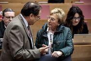 El conseller de Hacienda, Vicent Soler, conversa con la consellera de Sanidad, Ana Barceló, antes de empezar el pleno de las Cortes.