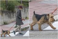 Elena de Borbón, paseando a su perro esta semana.