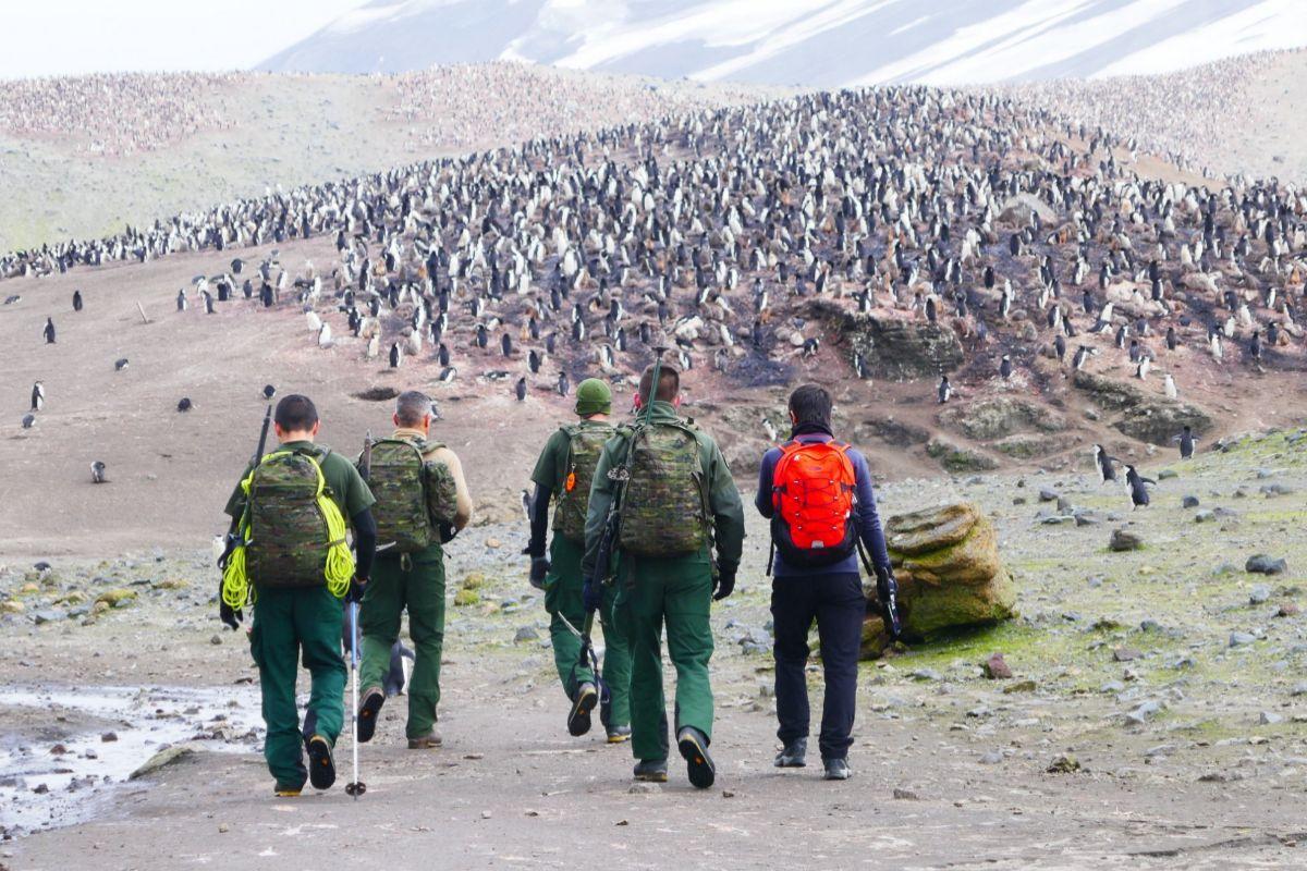 Miembros de la base Gabriel de Castilla se dirigen hacia una pingüinera