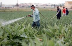 El sector agrario demanda profesionales