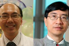 De arriba abajo y de izquierda a derecha: Vicent C. C. Cheng, Kwok Yung Yuen, Patrick C. Y. Woo y Susanna K. P. Lau.