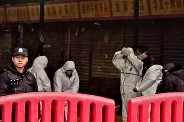 El mercado de Wuhan el 22 de enero.