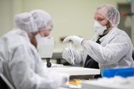Empleados de una fábrica cosen mascarillas contra el coronavirus.