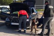La policía inspecciona uno de los coches interceptados.
