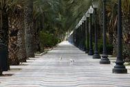 La Explanada de Alicante completamente vacía por la cuarentena enplena Semana Samta.