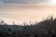 Un hombre camina sobre una parte del bosque calcinado, cerca de Chernóbil.