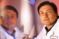 Guido Silvestri dirige la división de Microbiología e Inmunología del Centro de Investigación Yerkes de la universidad de Emory (Atlanta).