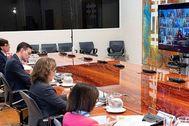Pedro Sánchez, durante la reunión por videoconferencia con los presidentes autonómicos.