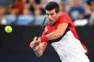 Novak Djokovic, en la última ATP Cup.