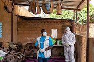 Trabajadores de Unicef, con mascarillas en Níger.