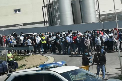 Imagen tomada el 30 de marzo en el acceso al matadero de Huesca, durante el estado de alarma.