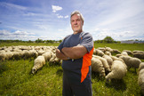 Jorge Izquierdo ante un rebaño de ovejas, en su explotación ganadera, en Madrid.