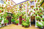 Los Patios de Córdoba abren este año al público con rutas virtuales en 360º