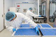Técnicos de laboratorio cargan viales. Reuters