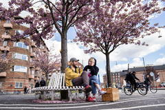 Copenhagen (Denmark).- Malte and Xenia sit under the Japanese cherry trees in full bloom at The Black Square in Copenhagen, Denmark, 03 May 2020. ( lt;HIT gt;Dinamarca lt;/HIT gt;, Japón, Copenhague) EPA/ DENMARK OUT