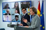 El ministro Illa y el doctor Simón, en rueda de prensa telemática en Moncloa.
