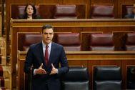 Pedro Sánchez, en la última sesión de control al Gobierno.