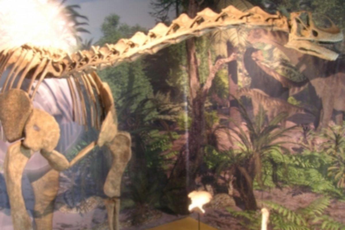 Hallan los restos de un dinosaurio gigante de más de 20 metros en Teruel