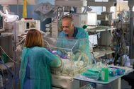 Dos especialistas de la Unidad de Neonatología del Materno Infantil de Málaga cuidan a un bebé prematuro.
