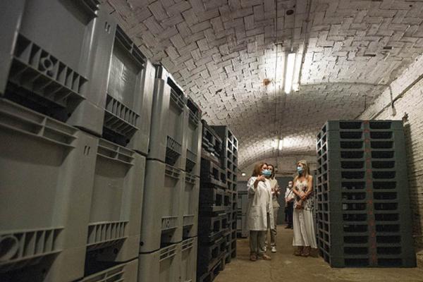 Lo mejor del Arqueológico se expondrá en el convento de Santa Inés mientras se remodela el museo sevillano