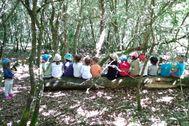 Algunos alumnos de la escuela Nenea, de la Federación Edna, en el bosque en una imagen de archivo