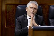 El ministro del Interior, Fernando Grande-Marlaska, en el Congreso.