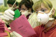 Integrantes de una mesa electoral de Alemania se protegen con mascarillas y guantes.