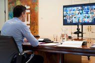 Pedro Sánchez, durante una reunión con los presidentes autonómicos a través de videoconferencia.