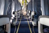 Toma de temperatura y rastreo del pasajero: así se volará en la era Covid