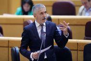Fernando Grande-Marlaska, durante la sesión de control en el Senado.