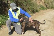 Voluntario de una sociedad protectora de animales de Mataró con un can